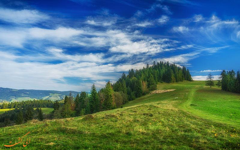 پارک های ملی لهستان