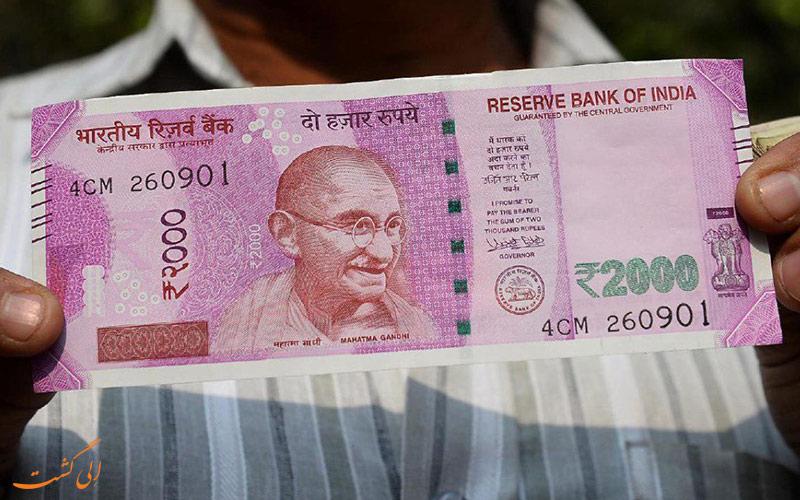 موریانه ها عاشق طعم پول کشور هند هستند!