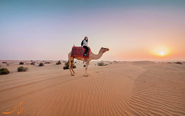 کویرنوردی در دبی