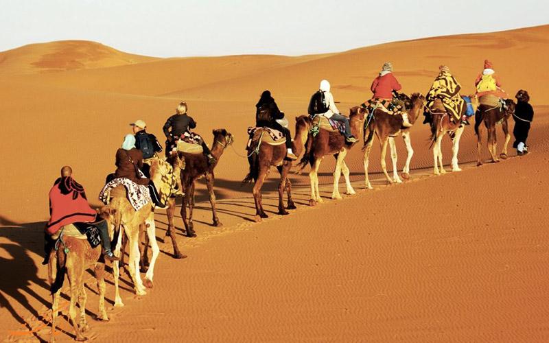 صحراگردی