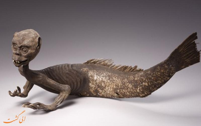 کشف هولناک پری دریایی در آمریکا! + (تصویر18+)