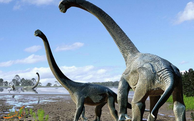 ردپای 170 میلیون ساله