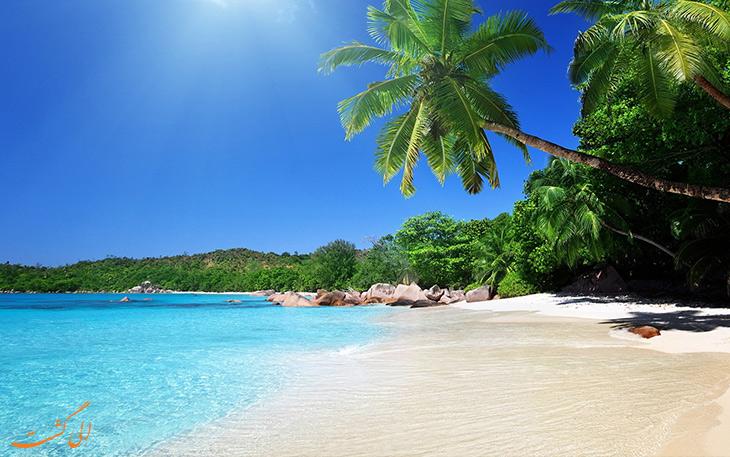 ساحل پالم