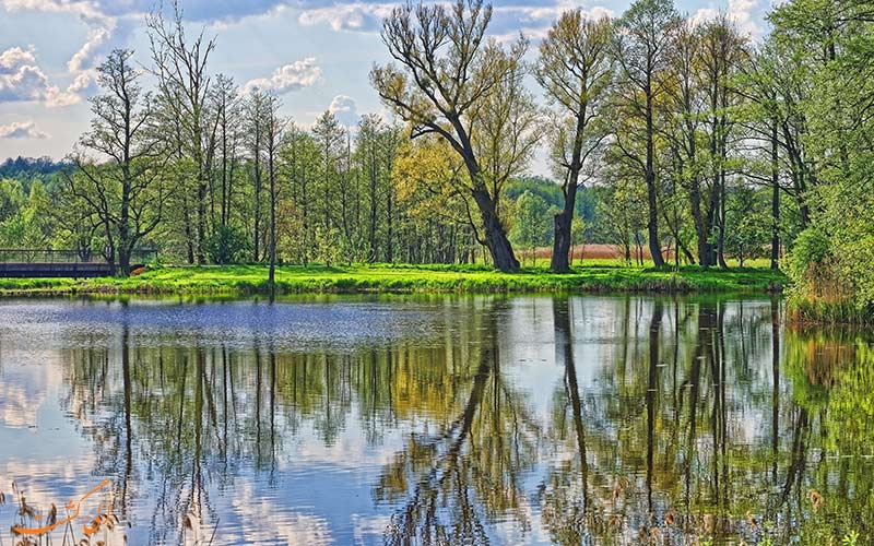 پارک ملی Białowieża