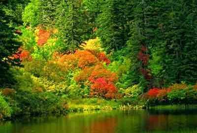 طبیعت بلغارستان