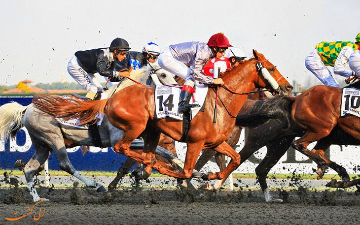 جام جهانی اسب دوانی دبی