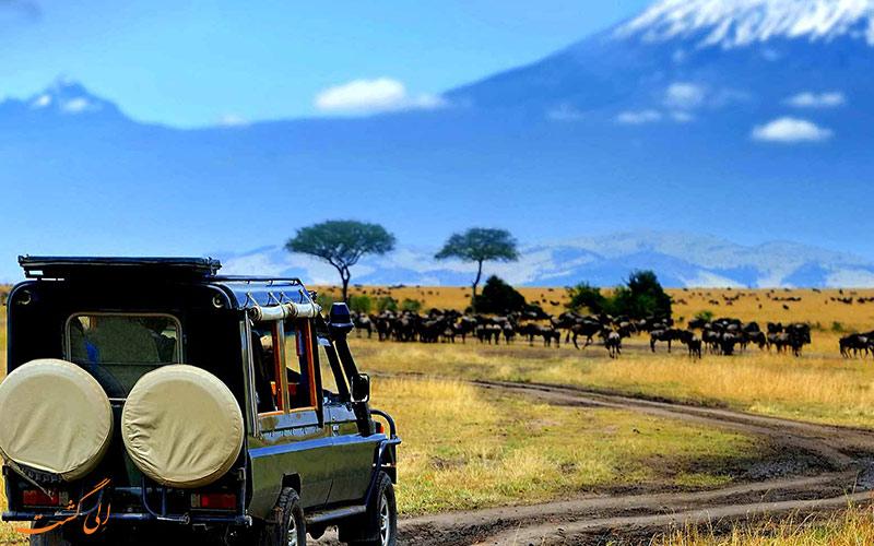 سافاری در کنیا