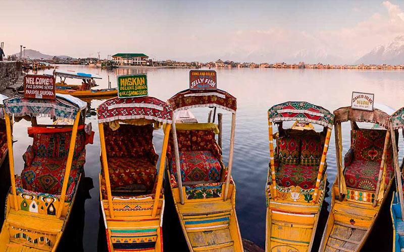 شیکارا سواری در هند-انواع شیکاراها