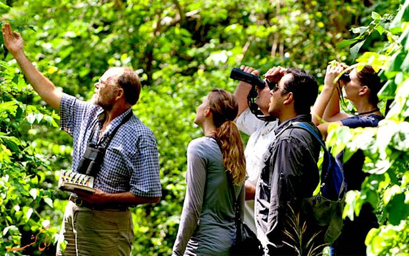 نکات سفر به جنگل-دوربین