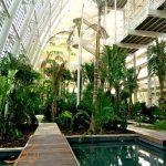 پارک مرکزی مشرف ابوظبی، یکی از بهترین پارک های جدید ابوظبی