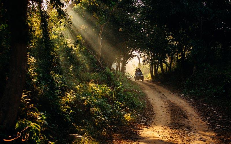 پارک ملی جیم کاربوت هند