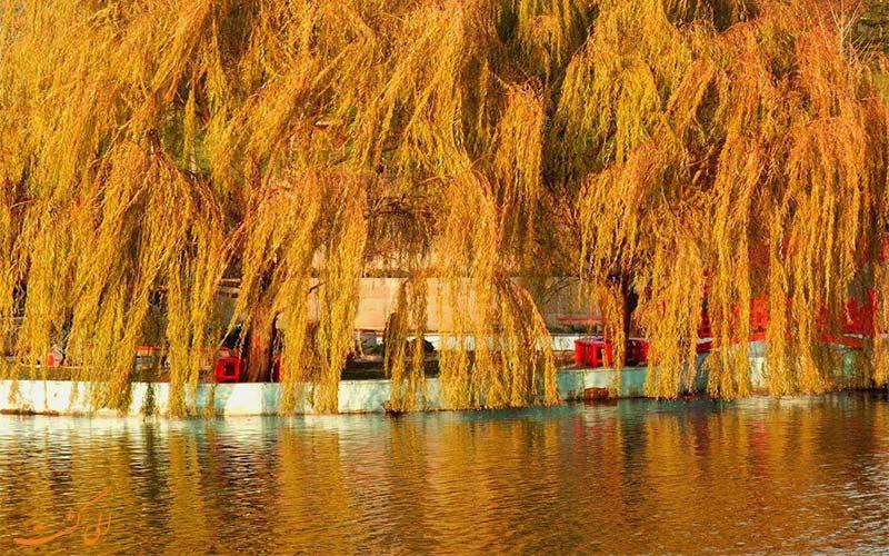 پاییز ترکیه-آنکارا
