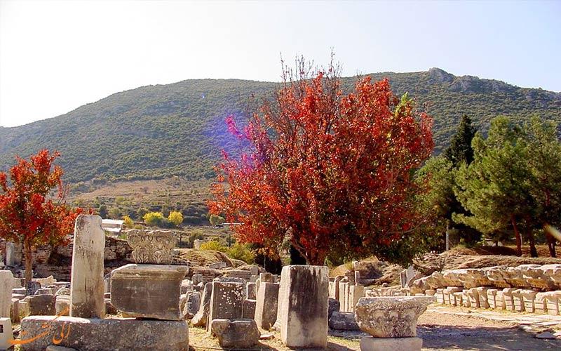 پاییز ترکیه-افسوس