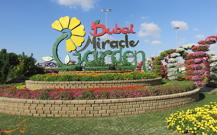باغ گل معجزه ی دبی ملقب به میراکل