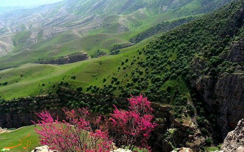 موقعیت مکانی دره شمخال