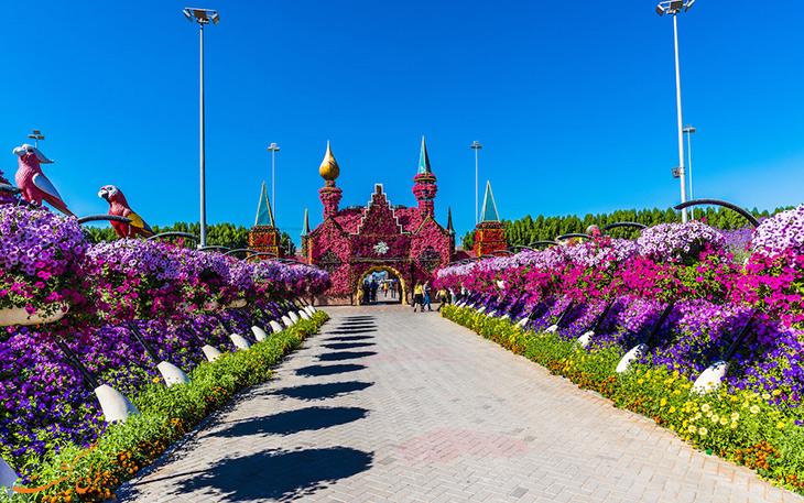 باغ گل در دبی