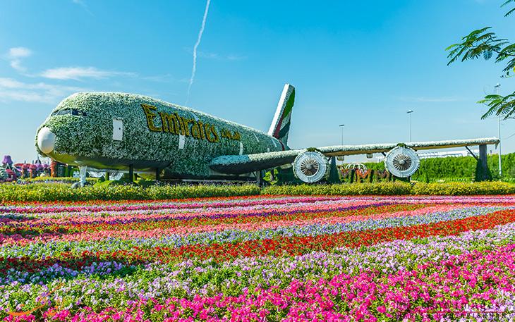 هواپیمای گل آرایی شده