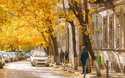 جاذبه های پاییزی گرجستان