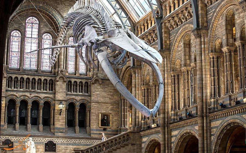 موزه لندن