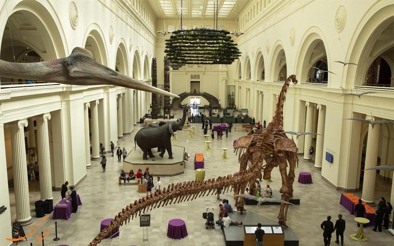 موزه فیلد