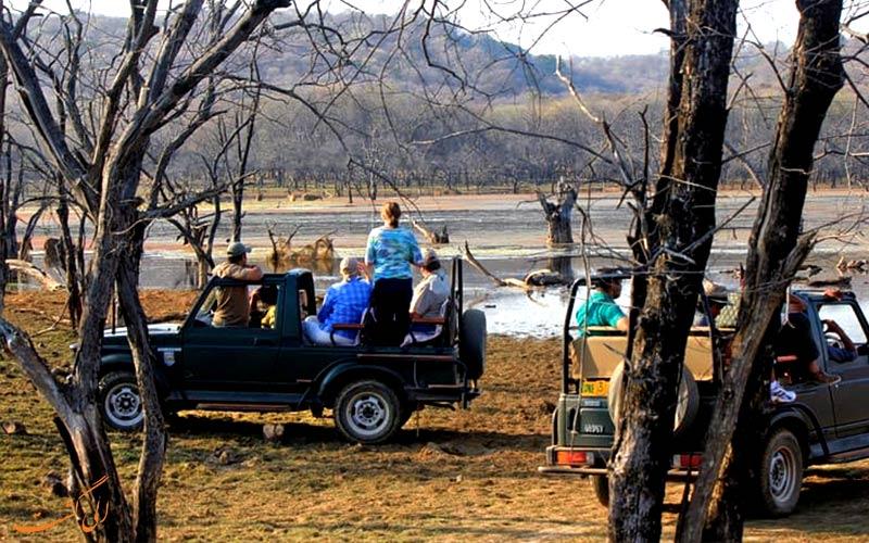 سافاری پارک ملی رامتانبور هند-تور هند