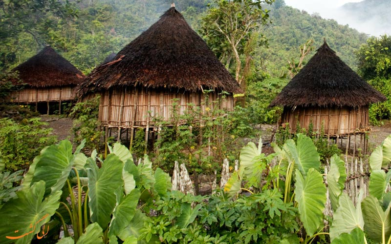 معماری بومی پاپوآ گینه نو