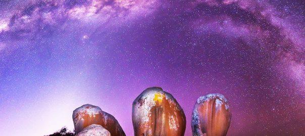 تخته سنگ های شگفت انگیز مورفیز هیستکس