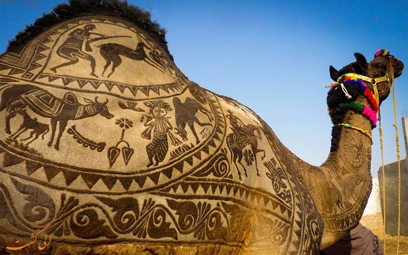 تزئینات پشم شتر در هند