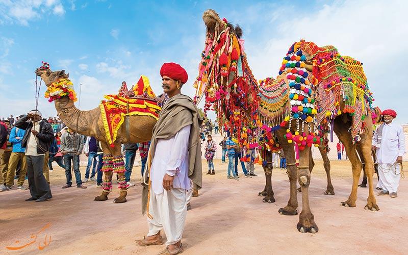 نکات شرکت در جشنواره شتر بیکانر هند