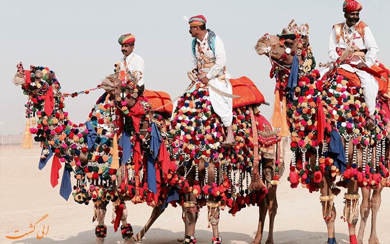 مسابقات شترسواری در راجستان هند
