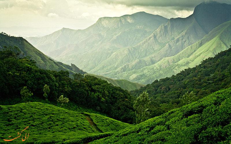 جاذبه های مزارع چای-اقامت