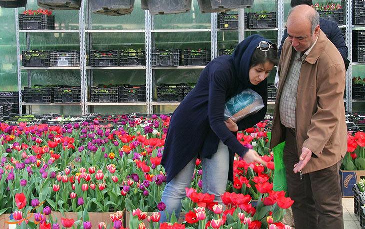 مرکز گل فروشی تهران