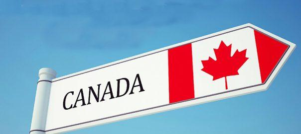 دلایل اصلی ریجکت شدن ویزای کانادا و چگونگی رفع آن