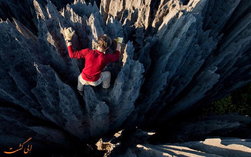 از محیط زیست ماداگاسکار