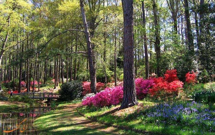 بهار در گرجستان