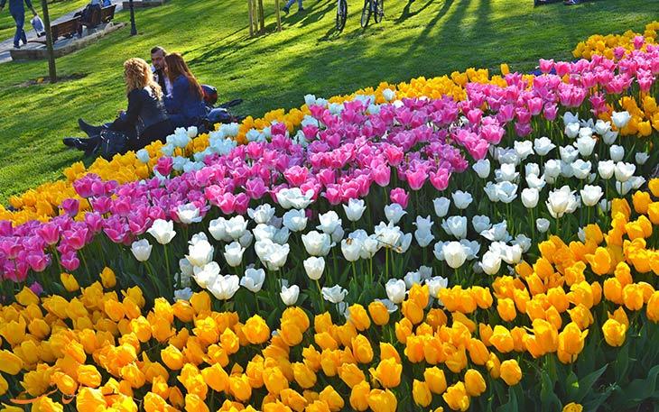 فستیوال گل های لاله در استانبول