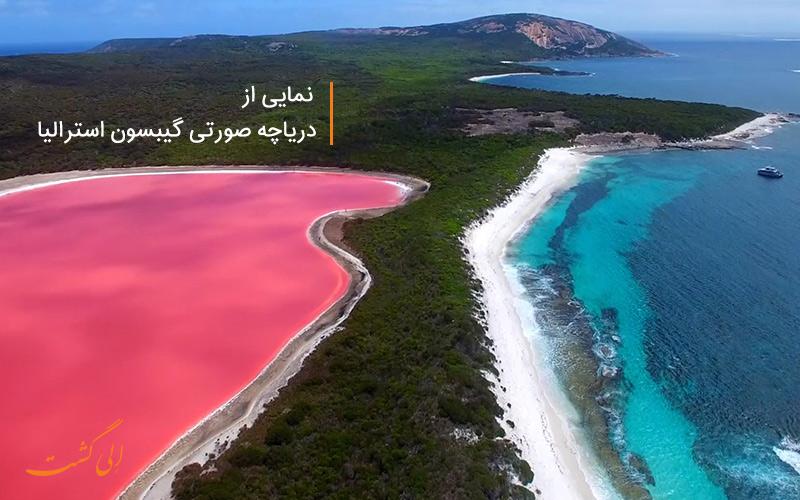 دریاچه صورتی گیبسون استرالیا