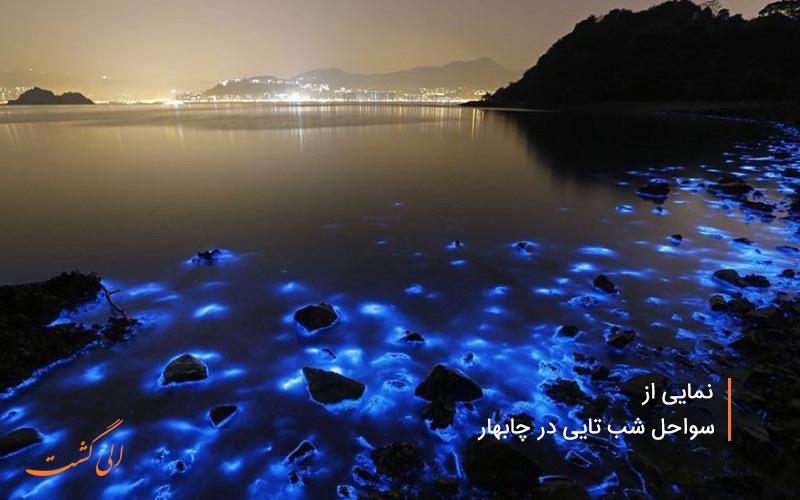 سواحل شب-تایی در چابهار نمونه ی مشاهده وادهو