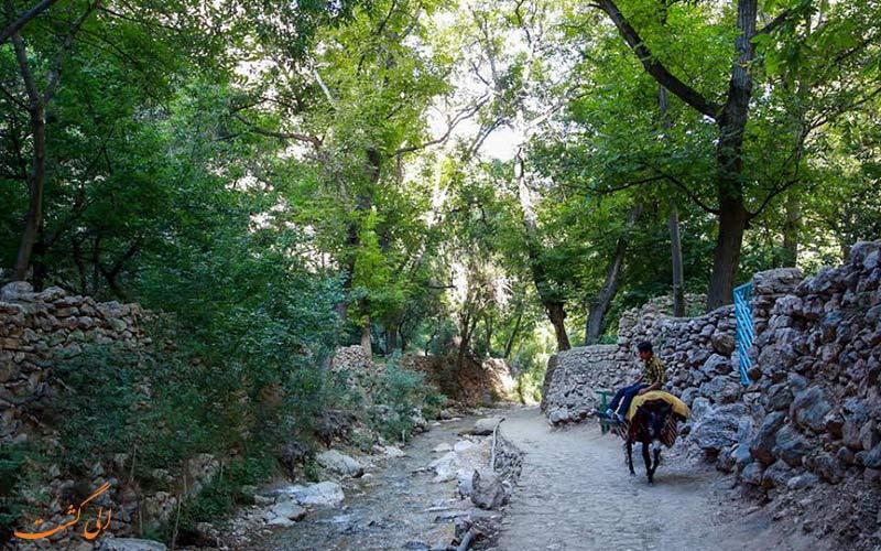 زاویه ای دیگر از روستاهای مشهد