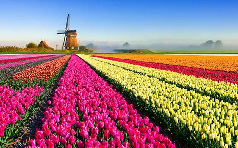 بهار با هوا و طبیعت فوقالعاده